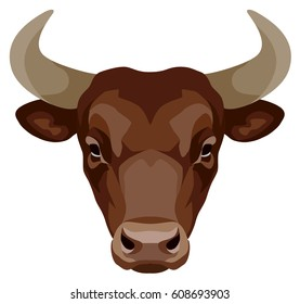 vector graphical illustration of a head of a bull brown. front view