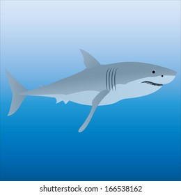 A Vector Gray Shark Isolated With Background