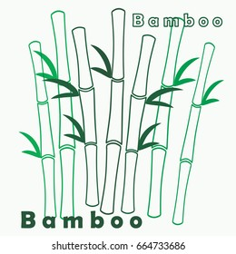 Vector green bamboo branches and leaves on white background with signs