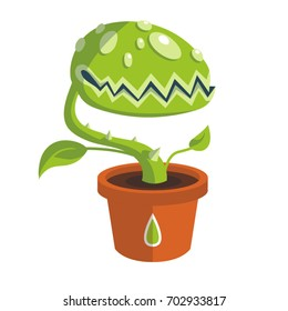 Vector green carnivorous plant with teeth in brown pot
