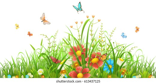 Vector green grass with flowers and butterflies on white