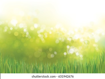 Vector green grass  nature background.