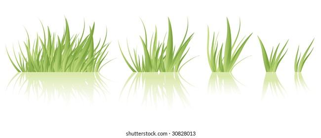 Tuft Of Grass Images Stock Photos Amp Vectors Shutterstock