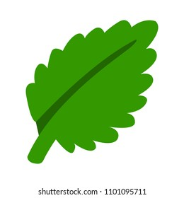 vector green leaf illustration, nature and organic concept - ecology symbol