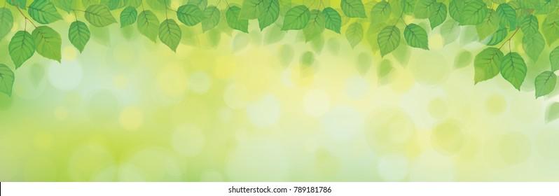 Vector green leaves border on green bokeh background.