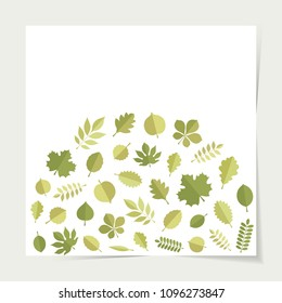 Vector green leaves (elm, beech, ash, linden, birch, alder, aspen, willow, maple, poplar, rowan, hawthorn, walnut, apple, oak, acacia, chestnut, conker) in form of stack isolated on white backgound