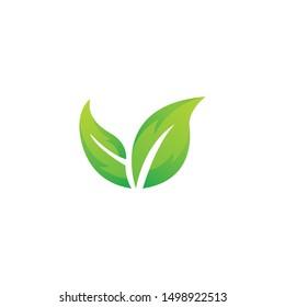 vector of green leaves, leaves, plants, tree
