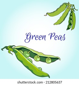 vector green peas pods