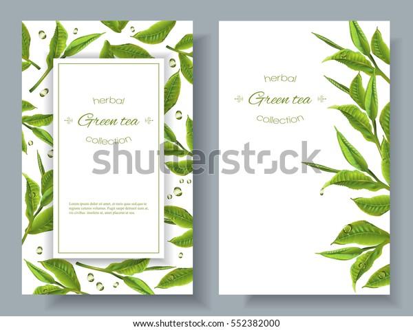 Vector Green Tea Banners Tea Leaves Stock Vector Royalty Free 552382000