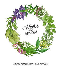 Vector greenery circle wreath template with spices and herbs. Decorative colorful composition with type design