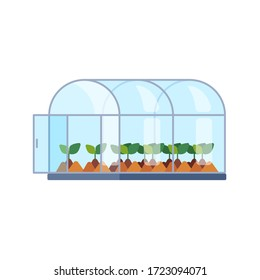 Vector greenhouse with different plants inside in flat style. Horticultural conservatory for growing vegetable, flowers