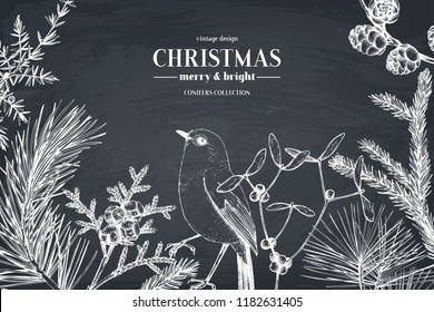 Vector greeting card or invitation design  with hand drawn conifers, holly berries, mistletoe, cones and birds. Holiday decor elements. Vintage Christmas or New Year illustration on chalkboard