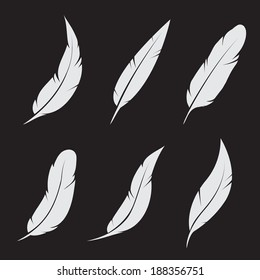 Vector group of feather on black background