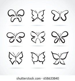 Vector group of hand drawn butterfly on white background. Insect Animals.