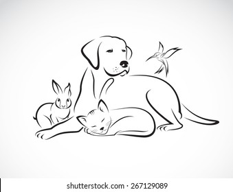 Vector group of pets - Dog, cat, bird, rabbit, isolated on white background