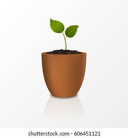 Design Template Of Realistic Icon The Sprout In A Brown Flower