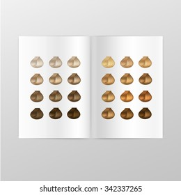 Vector Hair Color Palette Catalog Isolated on White Background