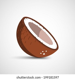 Vector half of coconut