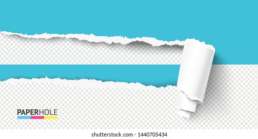 Vector half empty realistic torn paper piece curled in scroll with rip hole edges and shadows on a halfed transparent background for a sale advert colorful banner revealing some message.