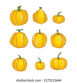 Vector of Halloween pumpkin set with Different shapes and sizes isolated on white background.