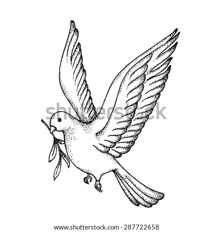 Vector Hand Draw Dove Symbol Peace Stockvector Rechtenvrij