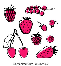 Vector hand draw food. Healthy farm natural product. Ink brush. Berries.