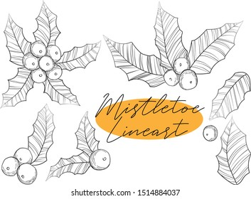 Vector hand draw illustration of line art ilex leaves and berries collection in sketch style Black and white line art of christmas holly mistletoe set.
