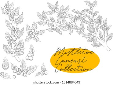 Vector hand draw illustration of line art ilex branch, leaves and berries collection in sketch style Black and white line art of christmas twig of holly mistletoe set
