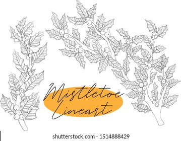 Vector hand draw illustration of line art ilex branch with leaves and berries in sketch style Black and white line art of christmas twig of holly mistletoe.