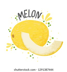 Vector hand draw melon illustration. Yellow ripe melon with juice splash isolated on white background. Textured menons slice and splashes, juice tropical fruit with word Melon on top. Fresh silhouette