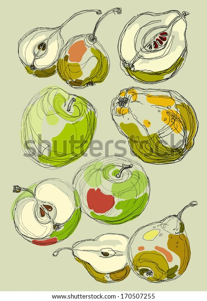 Vector hand drawing bright beautiful fruits set