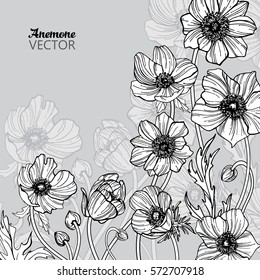 Vector hand drawn anemone set