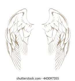 Vector hand drawn angel wings isolated on white background