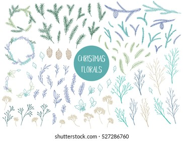 Vector hand drawn big collection of christmas plants and branches. Elegant design elements.