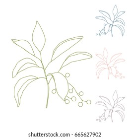 Vector hand drawn botanical illustration with a simple twig with leaves and berries. Thin lines drawing isolated on white background.