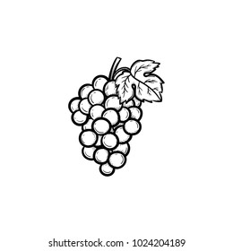 Vector hand drawn Bunch of grapes outline doodle icon. Bunch of grapes sketch illustration for print, web, mobile and infographics isolated on white