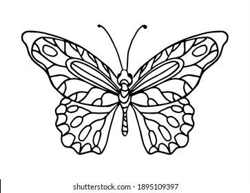 Vector hand drawn butterfly. Line art illustration for coloring book. Anti stress hobby.