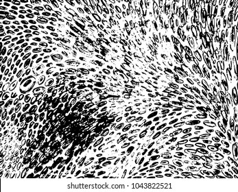 Vector hand drawn calligraphic brush stroke monochrome pattern. Black and white style design. Good for poster, fabric print, web page background, birthday card invitation, interior surface texture