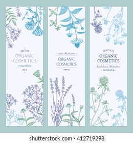 Vector hand drawn cosmetics plants illustration, concept, template.