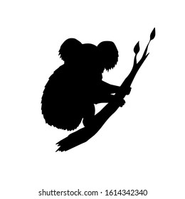 Vector hand drawn doodle sketch koala silhouette sitting on tree branch isolated on white background
