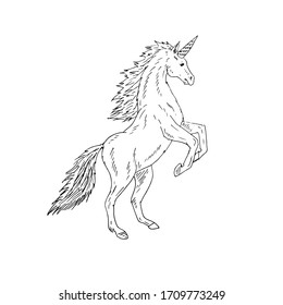 Vector hand drawn doodle sketch unicorn isolated on white background