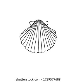 Vector hand drawn doodle sketch shell isolated on white background