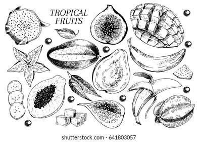 Vector hand drawn exotic fruits. Engraved smoothie bowl ingredients. Tropical sweet food. Carambola, guava, papaya, fig, mango, banana, acai, pitaya, lychee Use for exotic restaurant food party