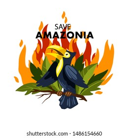 """Vector hand drawn flat style illustration """"Save Amazonia"""" depicting toucan and the rainforest on fire. For any media, flyers, web banners or articles connected to the fires of Amazonian"""