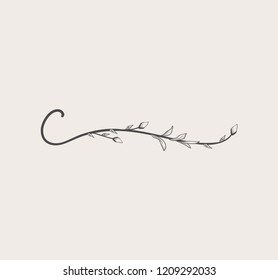 Vector Hand Drawn floral C monogram or logo. Lowercase Hand Lettering Letter c with Flowers and Branches. Wildflowers. Floral Design