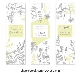 Vector hand drawn floral cards and banners. Elegant hand sketched flower drawing. Vintage hipster herb templates and flyers. Natural organic cosmetics packaging design.
