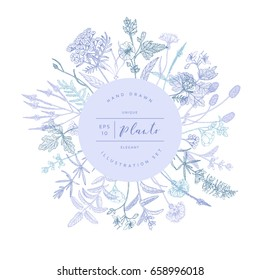 Vector hand drawn floral round banner. Elegant hand sketched flower drawing. Vintage hipster herb template for organic natural cosmetics packaging design.