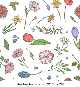 Vector hand drawn flowers pattern or background illustration