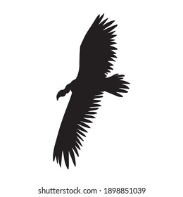 Vector hand drawn flying griffon vulture bird silhouette isolated on white background