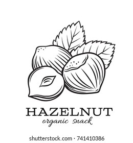 Vector hand drawn hazelnut for template label, packing and emblem farmer market design. Retro sketch style.